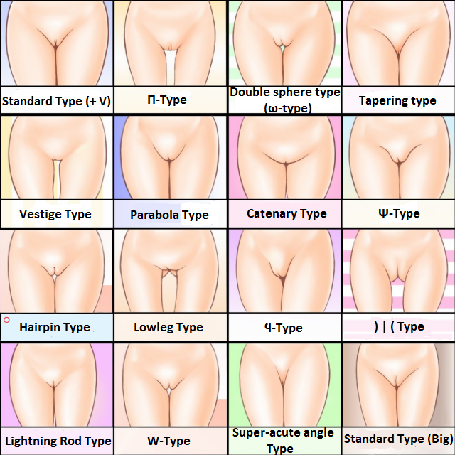Type pussy best Top 4